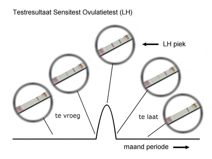 g_testresultaat-sensitest-ovulatietest.jpg