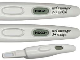De test geeft ook aan hoelang je al zwanger bent